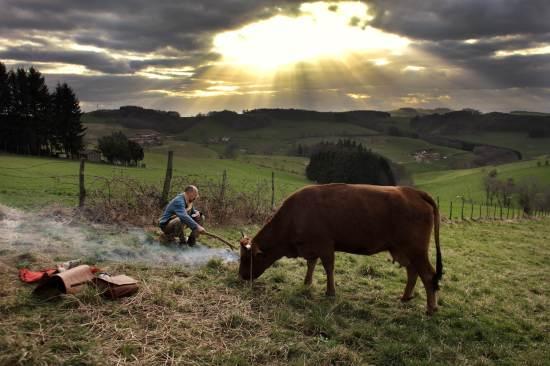 la-vaca-foto-6-prensa